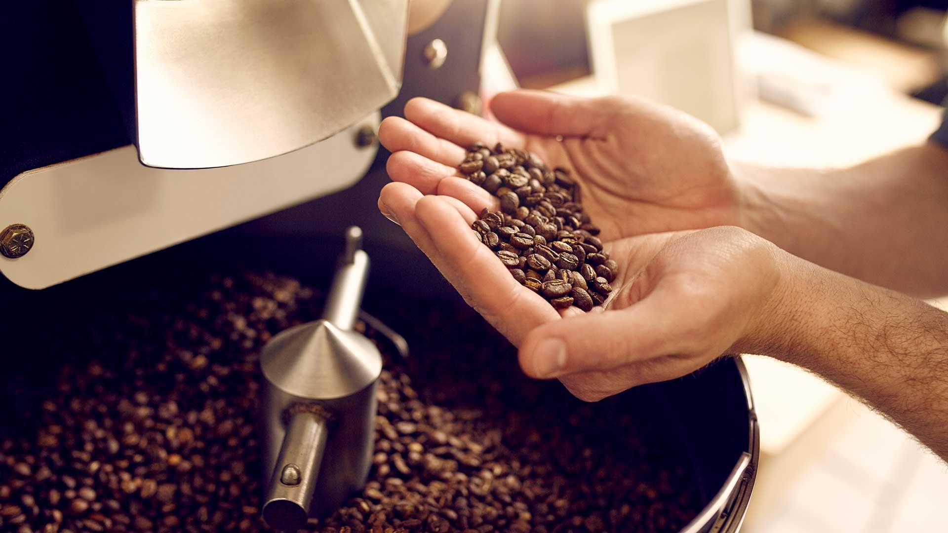 Hender som holder kaffebønner